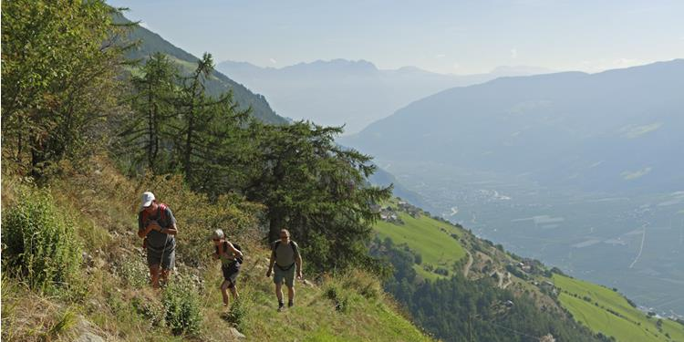 Venosta Valley High Mountain Trail: Resia/Reschen – Stava/Staben