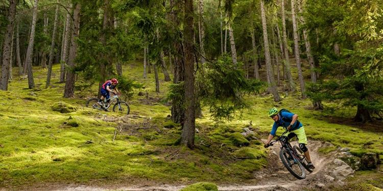 Hasl-Wieben Mountain Bike Tour and the Holy Hansen Trail