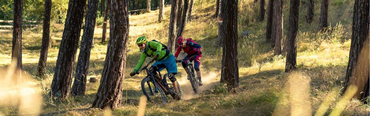 Latscher Alm - Tour - Latsch MTB - Die besten Mountainbike Trails im ...